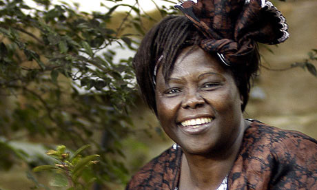Wangari Maathai. Photo:  Gianluigi Guercia
