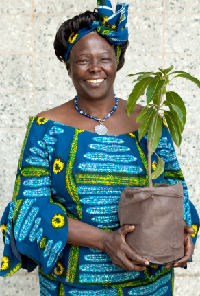 "Everything from forestation to micro credit has become ""roads to peace"". The concept of peace is therefore manifold. Peace Prize Laureate 2004 Wangari Maathai, who received the prize 'For her contribution to sustainable development, democracy and peace'"